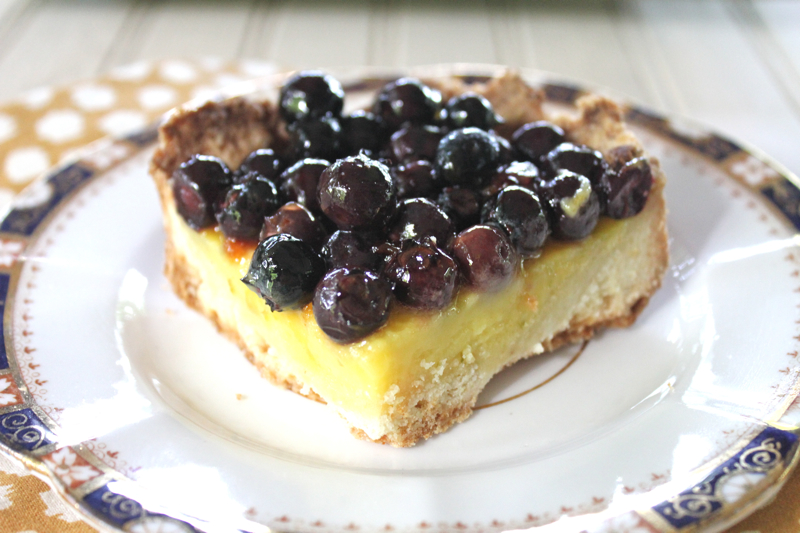 Lemon-Lime Blueberry Squares 1